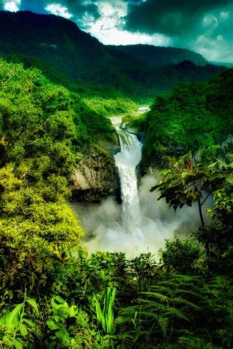 amazon travel the amazon south america beautiful green world