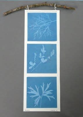 How To Make Sun Print Paper - 1000 ideas about sun prints on printing