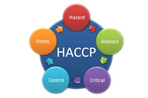 haccp sicurezza alimentare vision network shapes tomorrow s companies