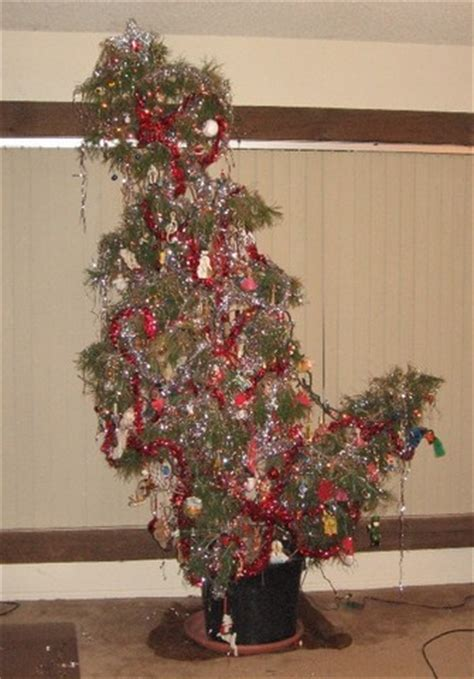 special christmas trees lighting the fuse