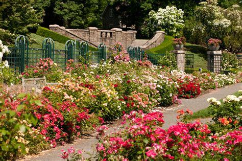 Garden Of New York Peggy Rockefeller Garden Nybg