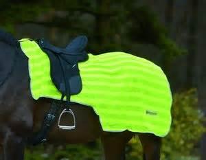 Mehr Sicherheit in Dämmerung und Dunkelheit   mit Pferden
