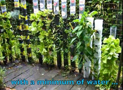 genius in a bottle pet bottle vertical garden s o paulo soda bottle tower for plants bottle patio and the o jays