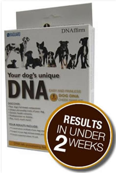 dna test reviews dna my canine breed identification test review