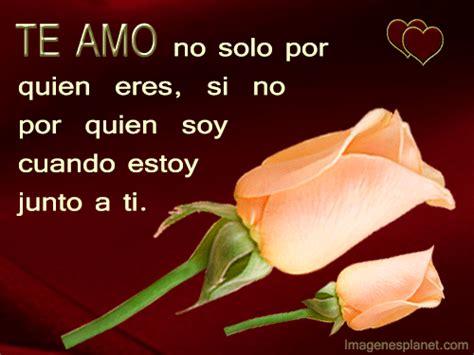 imagenes de rosas moradas con frases frases con imagenes de flores y rosas para el amor youtube