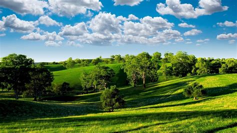 green landscape 6956 1920 x 1080 wallpaperlayer