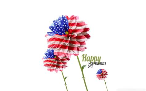 american wallpaper and design american flag flower design independence day wallpaper