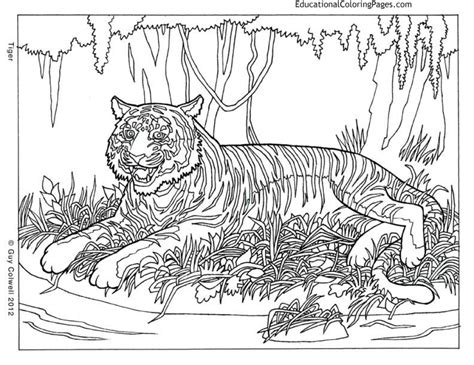 the coloring book for cool who animals books get this printable difficult animals coloring pages for