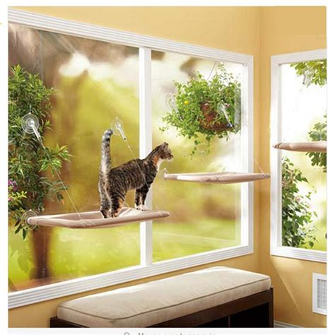 window perch 25 best ideas about cat window perch on cat window cat play tower and