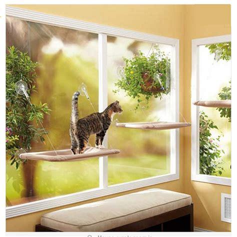 cat window bed 25 best ideas about cat window perch on pinterest cat