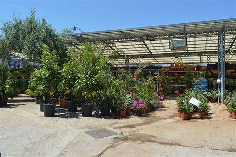 casa giardino palermo giardinaggio e agricoltura casa giardino
