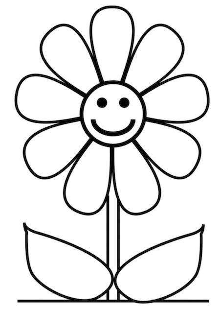 margherita fiore disegno disegno di margherita