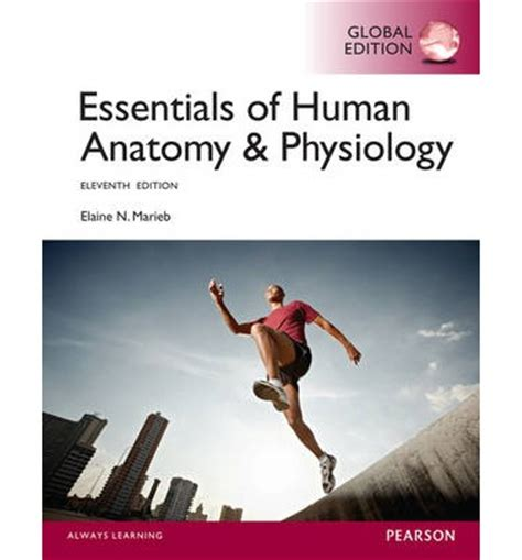 essentials of human anatomy physiology plus mastering a p with pearson etext access card package 12th edition essentials of human anatomy physiology with mastering a