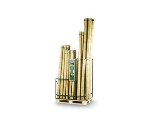 bambus discount bambusrohr quot tokio quot unbehandelt g 252 nstig kaufen