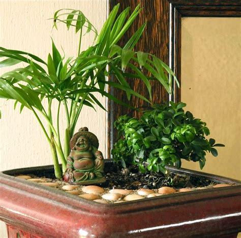 miniature mediation gardens create   peace