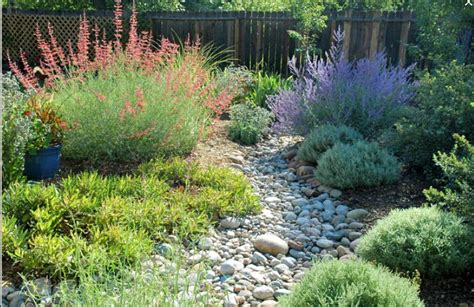 dry creek bed landscaping landscaping and gardening the owner builder network