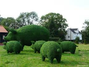 Topiary Horse Frame - topiary green garden art angryboar com magazine