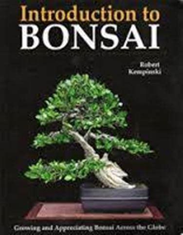 libro bonsai for beginners book libri sui bonsai storia del bonsai trovare libri sui