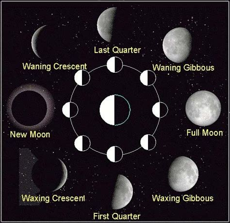 phases of the moon diagram for moon phases diagram space astronomy pictures photos
