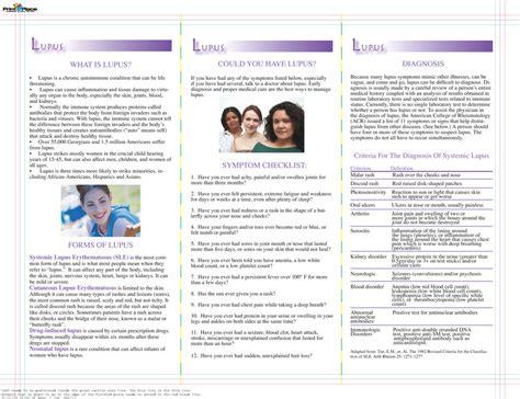 leaflet layout sle brochures 22 falmingos