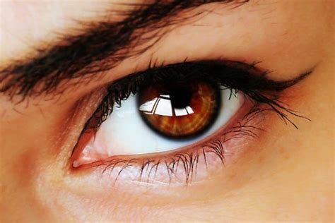 what do eye colors what does your eye color say about you njoy vision