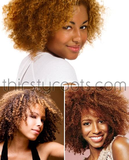 best henna for african american hair best hair color for natural african american hair pinpoint