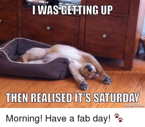 It S Saturday Meme - funny fab memes of 2017 on sizzle without