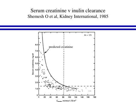 creatinine serum ppt plasma creatinine and the estimation of glomerular