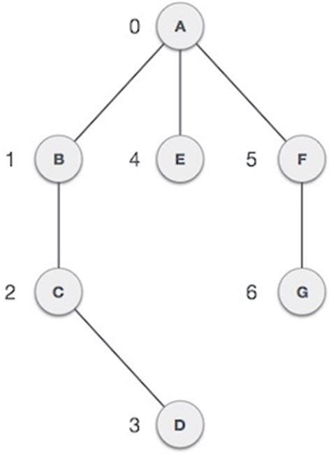 tutorialspoint algorithms programming java graphs introduction steemit