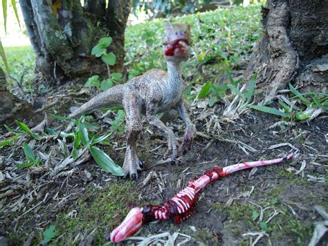 what does velociraptor eat it velociraptor eating a dinosaur by x alex on deviantart