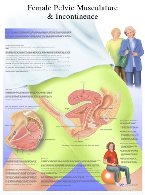 incontinence medication incontinence treatment depends diapers site