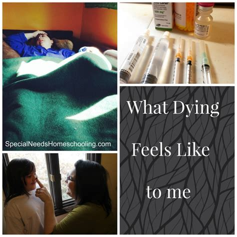 what dying feels like to me special needs homeschooling