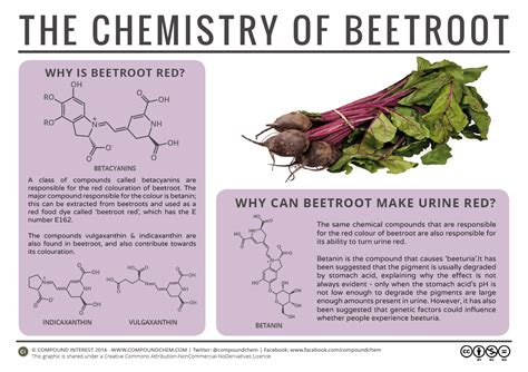why do i leak urine after going to bathroom compound interest why can beetroot turn urine red the