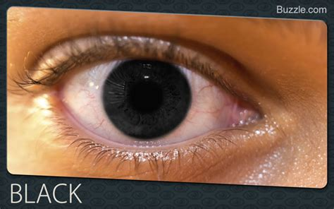 is black an eye color fascinating facts about eye colors