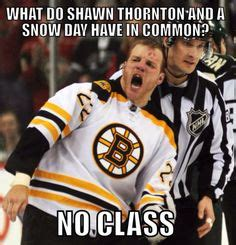 Bruins Memes - hockey on pinterest detroit red wings nhl and red wing