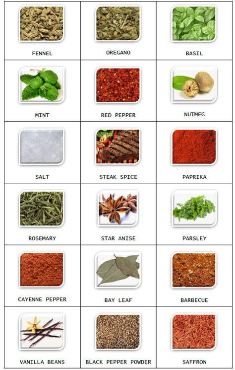spice label templates spice jar labels and templates to print free spice jar