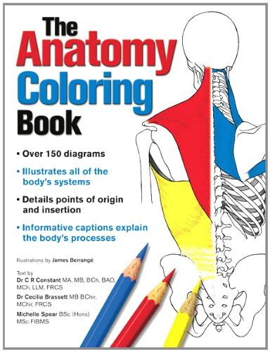 anatomy coloring book pearson booksplusnow on marketplace sellerratings