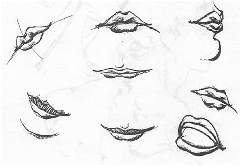 how to draw mouths drawing the human how to draw nose