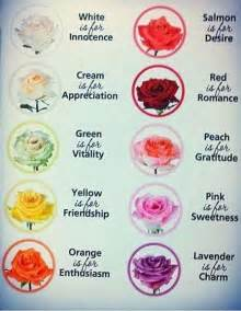 roses colors meaning meaning of different colored roses random