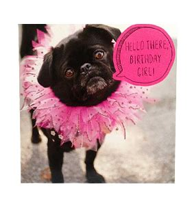 black pug cards pug birthday card breeds picture