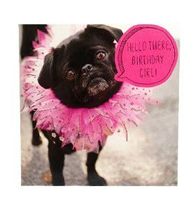 black pug birthday card black pug tutu birthday card i pugs
