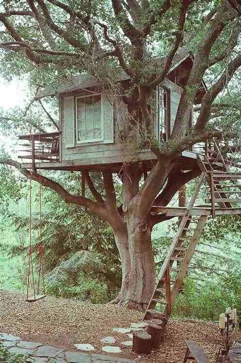 tiny tree house small tree house very well located tree house floating