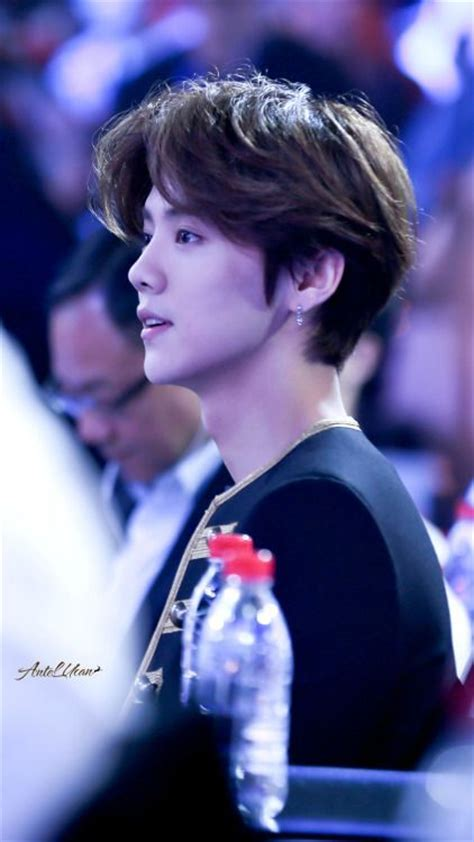 biography of exo luhan 1000 images about lu han on pinterest beijing deer and