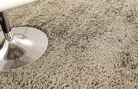 Which Is Better Or Polyester Carpeting - vs polyester carpet review home co