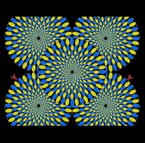 Ilusiones Opticas Taringa | ilusiones opticas taringa