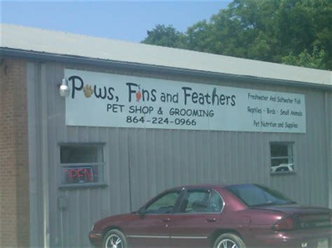 paws fins and feathers pet store anderson sc 29621