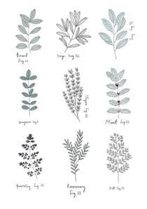 Herb Indoor Planter best 25 plant illustration ideas on pinterest plant art