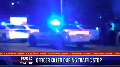 Officer During Traffic Stop by Officer And Killed During Traffic Stop