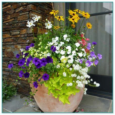Container Flower Gardening Ideas Container Flower Gardening Ideas 14