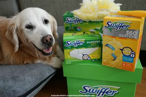 Swiffer Green Box Giveaway - shed happens manage pet hair with swiffer swifferfanatic